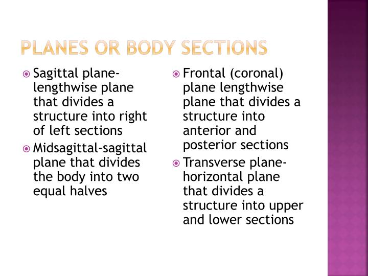 Planes or Body Sections