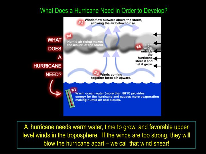 What Does a Hurricane Need in Order to Develop?