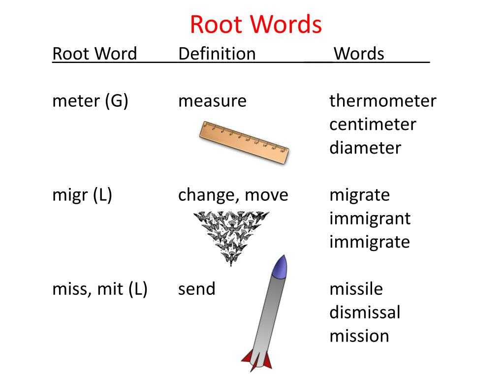 ppt root words powerpoint presentation id 7024050