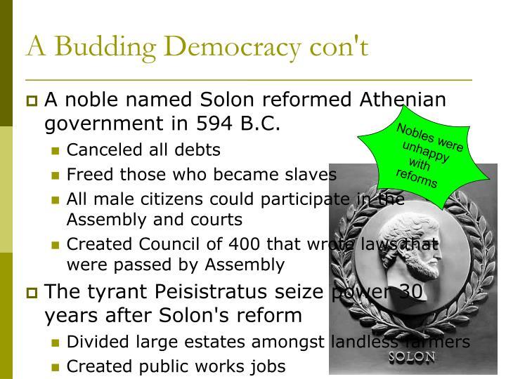 A Budding Democracy con't