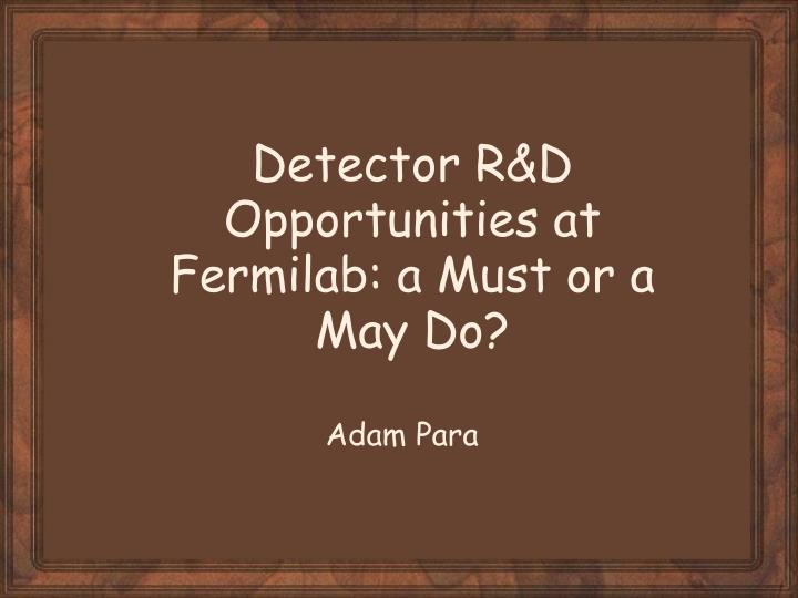 Detector r d opportunities at fermilab a must or a may do