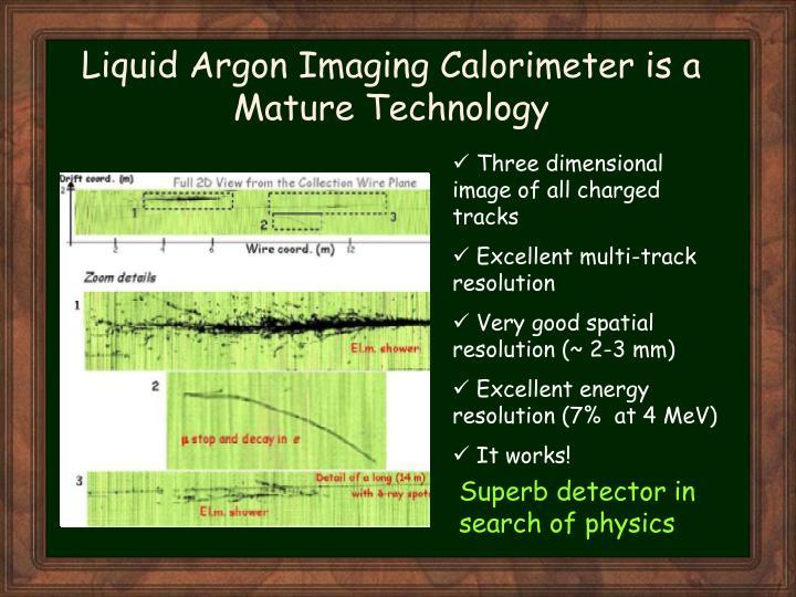 Liquid Argon Imaging Calorimeter is a Mature Technology