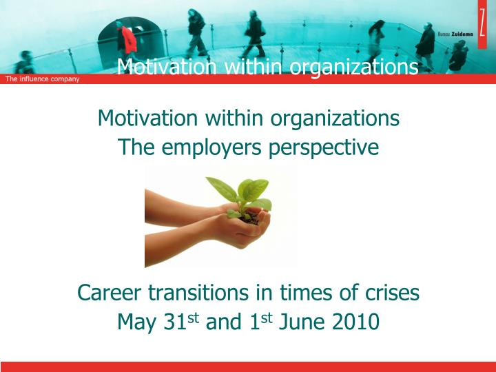 motivation within organizations n.