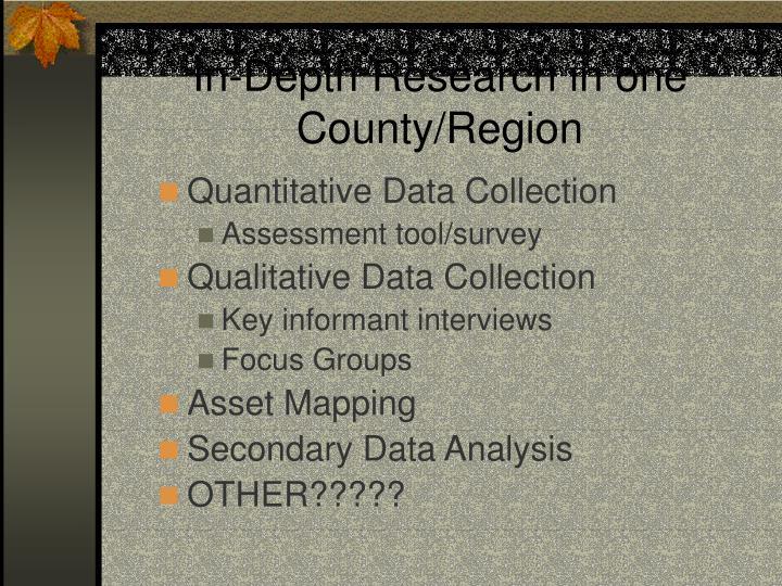 In-Depth Research in one County/Region