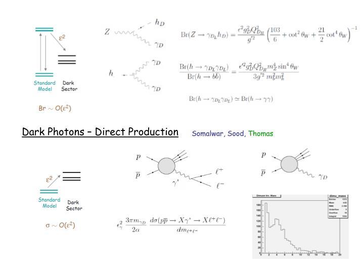Dark Photons – Direct Production