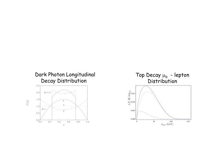Dark Photon Longitudinal         .   Decay Distribution