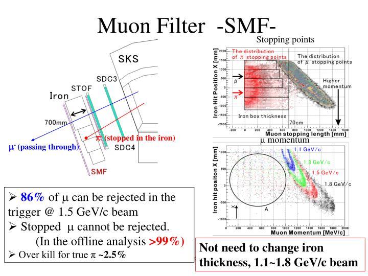 Muon Filter  -SMF-
