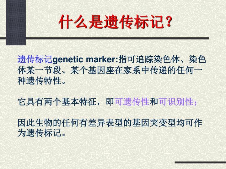 什么是遗传标记?