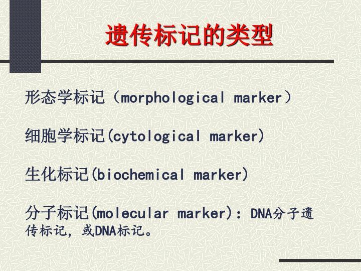 遗传标记的类型