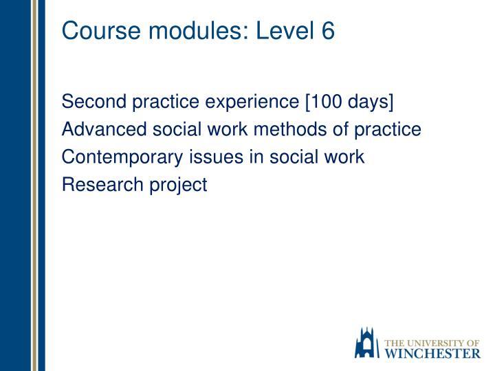 Course modules: Level 6
