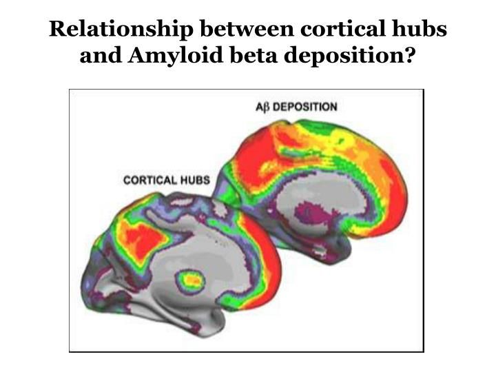 Relationship between cortical hubs and Amyloid beta deposition?