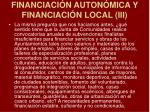 financiaci n auton mica y financiaci n local iii