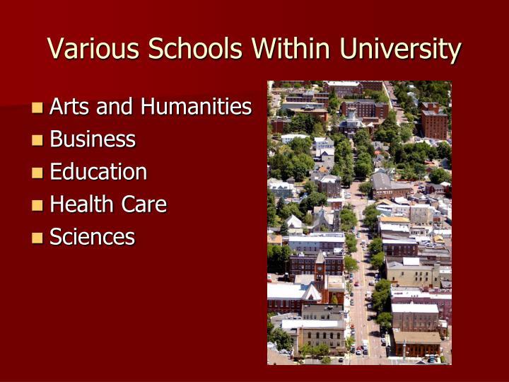 Various Schools Within University