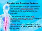 digestive and excretory systems9