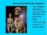 skeletal and muscular systems1