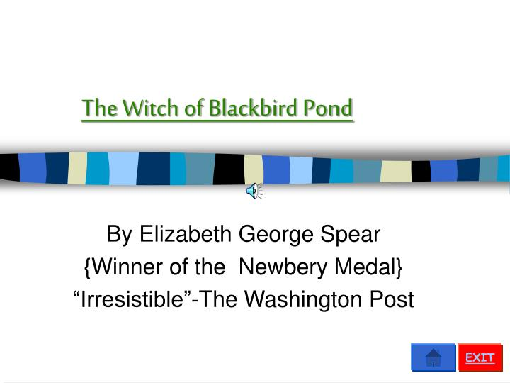 the witch of blackbird pond n.