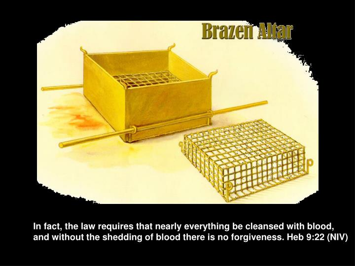 In fact, the law requires that nearly everything be cleansed with blood,