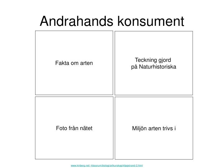 Andrahands konsument
