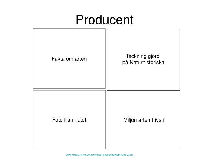 Producent