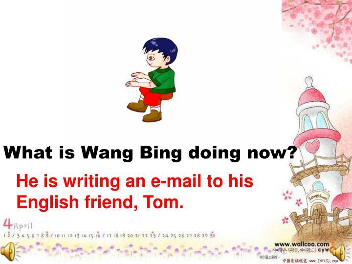 What is Wang Bing doing now?