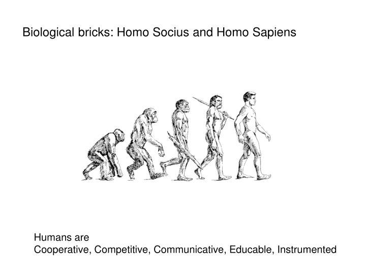 Biological bricks: Homo Socius and Homo Sapiens