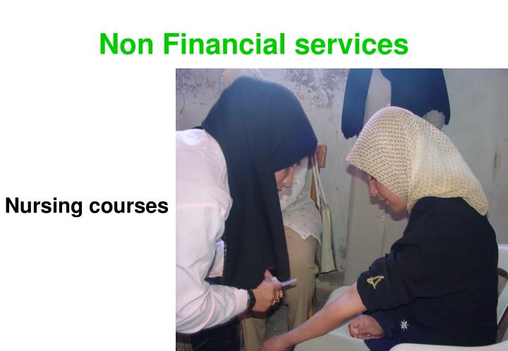 Non Financial services