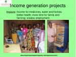 income generation projects