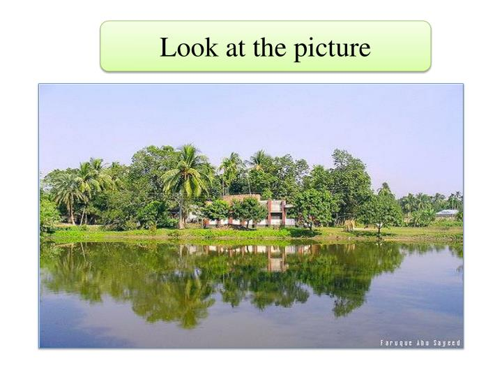 Look at the picture