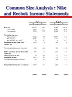 common size analysis nike and reebok income statements