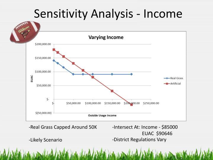 Sensitivity Analysis - Income