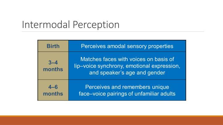 Intermodal Perception