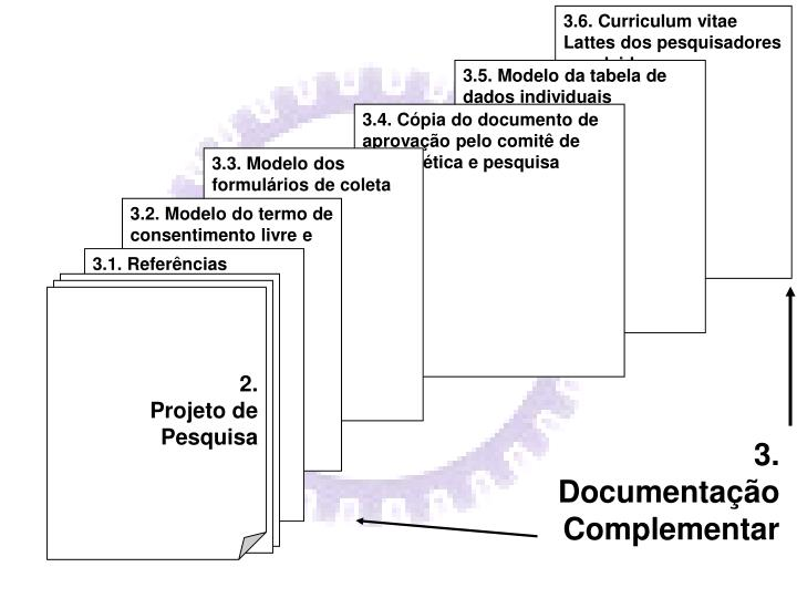 3.6. Curriculum vitae Lattes dos pesquisadores envolvidos