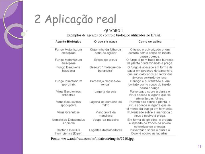 2 Aplicação real