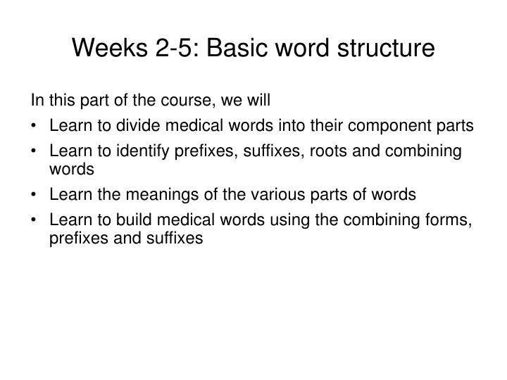 Weeks 2 5 basic word structure