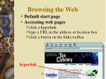 browsing the web