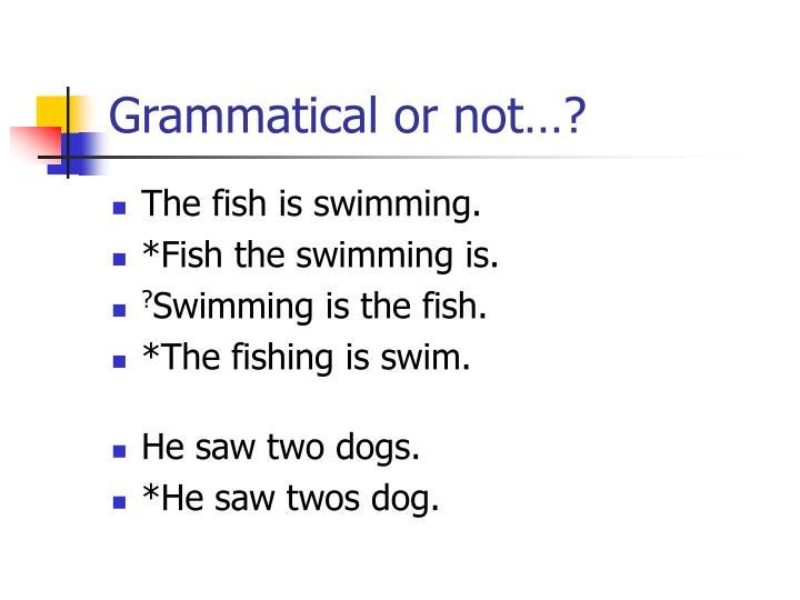 Grammatical or not…?