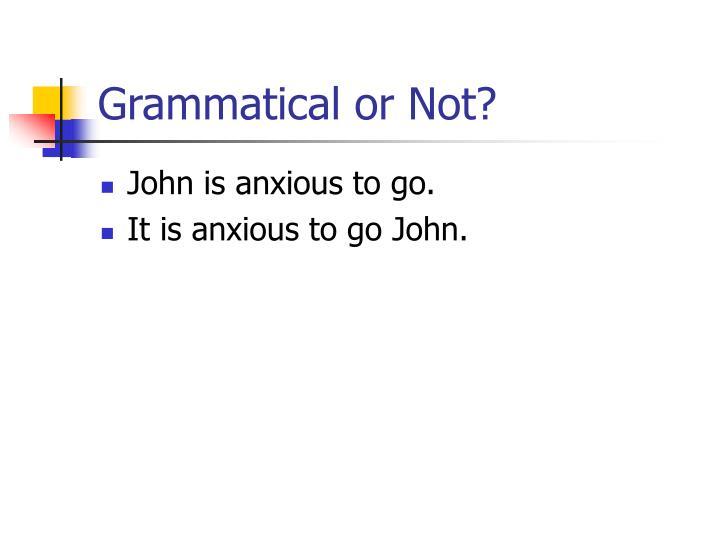 Grammatical or Not?