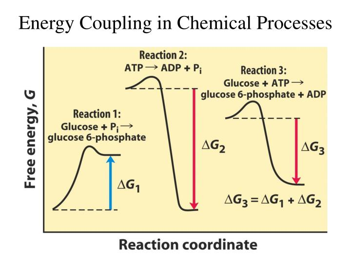 Energy Coupling in Chemical Processes