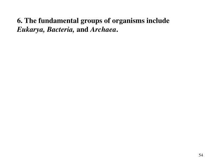 6. The fundamental groups of organisms include