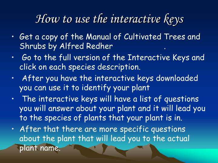 How to use the interactive keys