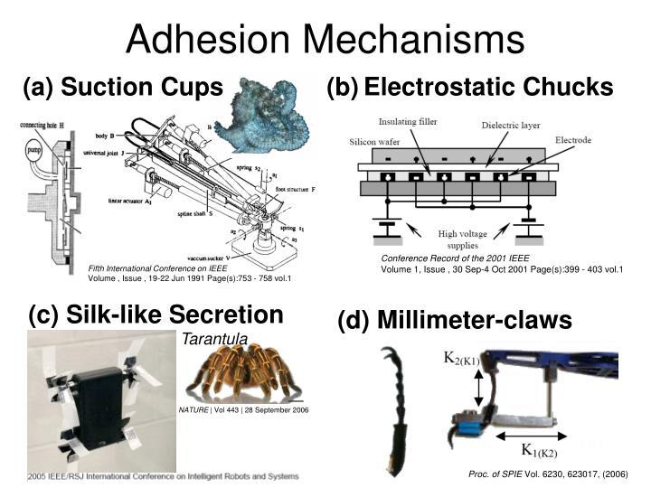 Adhesion Mechanisms