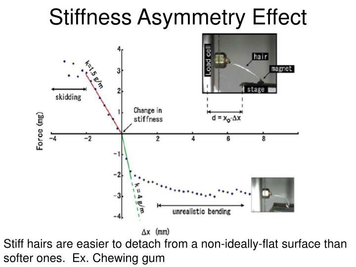 Stiffness Asymmetry Effect