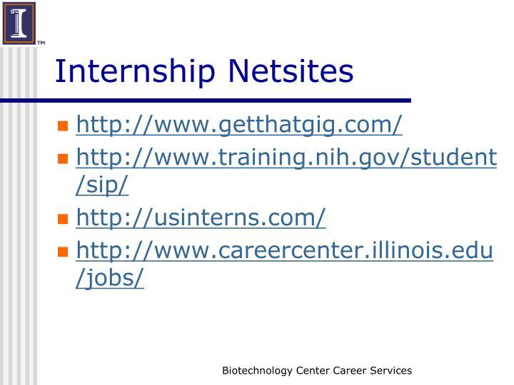 Internship Netsites
