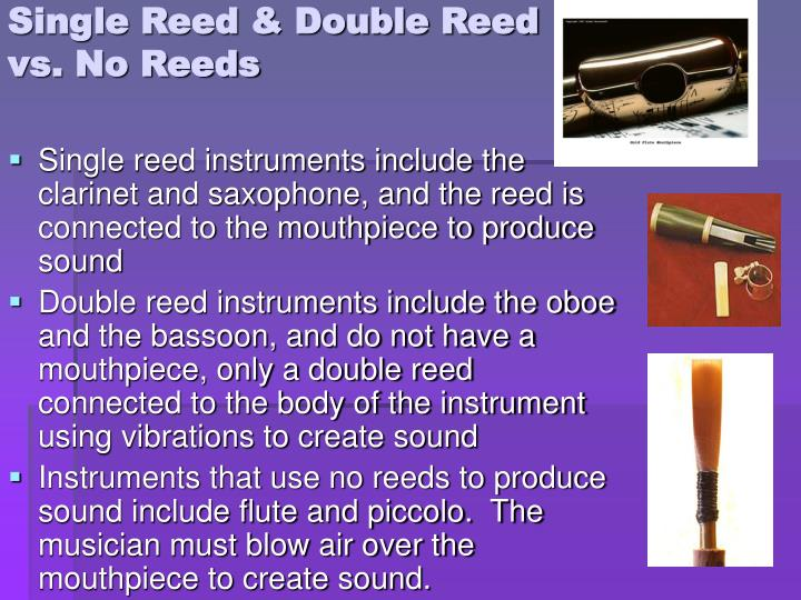 Single Reed & Double Reed