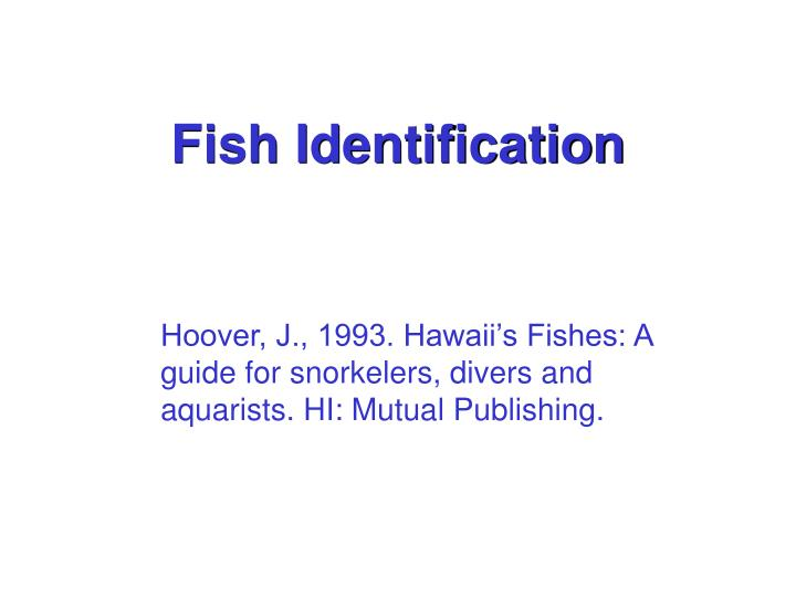 fish identification n.