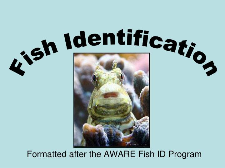 Formatted after the aware fish id program