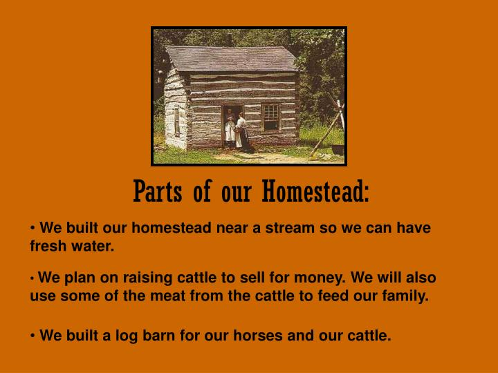 Parts of our Homestead:
