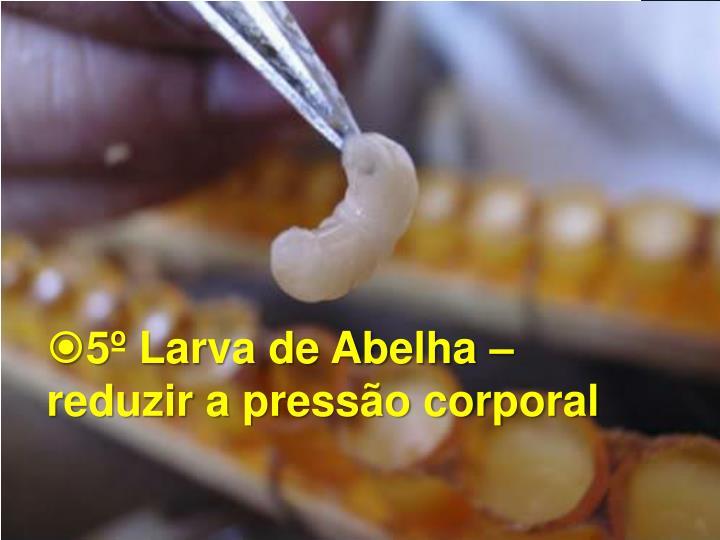 5º Larva de Abelha –