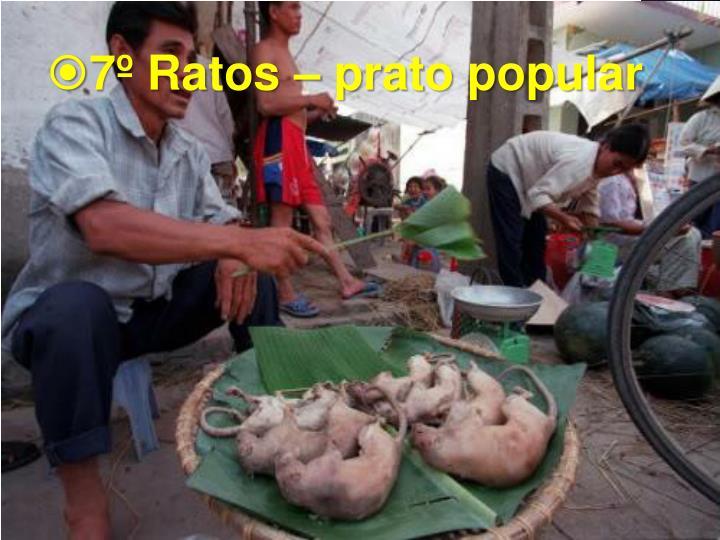 7º Ratos – prato popular