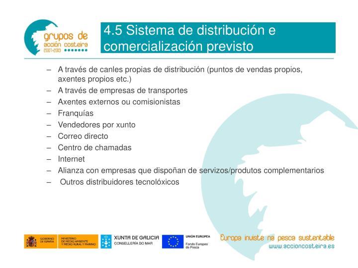 4.5 Sistema de distribución e comercialización previsto